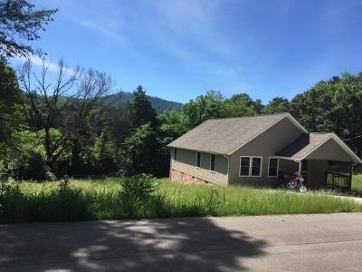 Sevierville Single Family Home For Sale: 2246 Green Acres