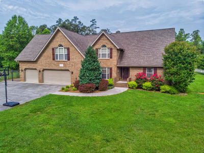 Knox County Single Family Home For Sale: 141 Mill Chase Drive