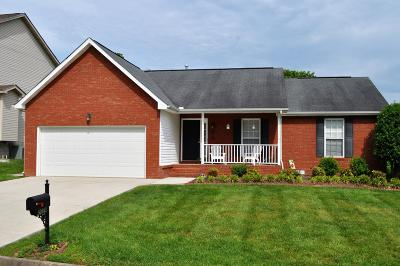 Knoxville Single Family Home For Sale: 2024 Cedargreens Rd