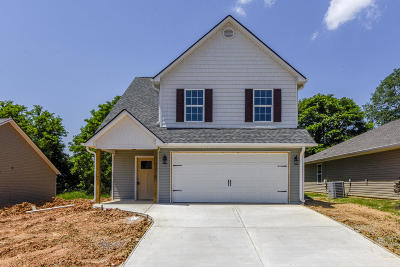 Knoxville Single Family Home For Sale: 3637 Flowering Vine Way