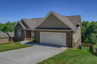 Knoxville Single Family Home For Sale: 7322 Remagen Lane