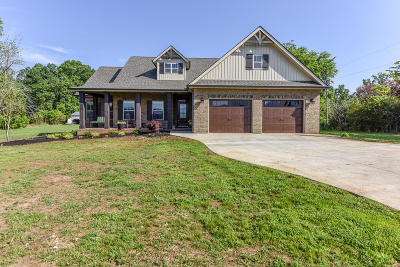 Maryville Single Family Home For Sale: 4819 Old Niles Ferry Rd