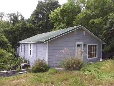 Knoxville Single Family Home For Sale: 112 Pelham Rd