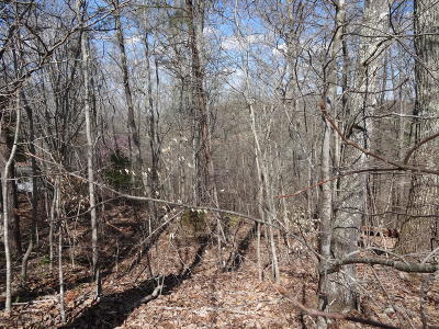 Maynardville Residential Lots & Land For Sale: Riverview Rd