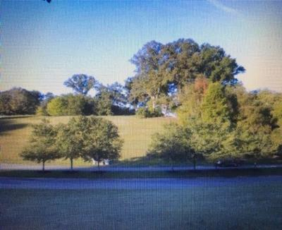 Lenoir City Residential Lots & Land For Sale: 120 Conkinnon Drive