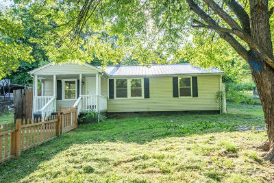Knoxville Single Family Home For Sale: 1805 Paris Rd