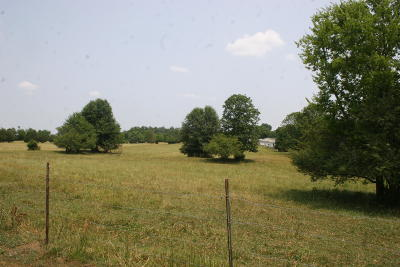 Residential Lots & Land For Sale: 1187 S Tellico Street St