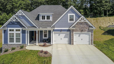 Lenoir City Single Family Home For Sale: 2168 Clear Mill Drive Drive