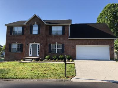 Knoxville Single Family Home For Sale: 8200 Gallaher Station Drive