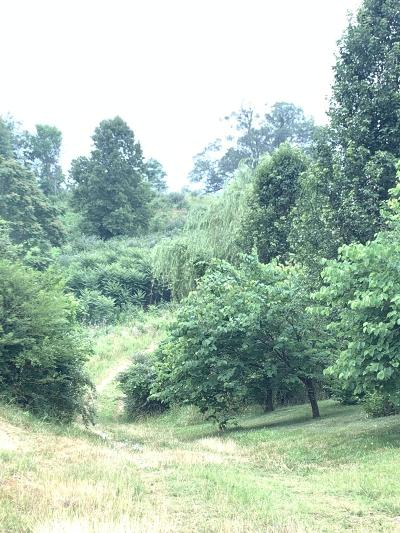 Anderson County Residential Lots & Land For Sale: Rolling Links Blvd