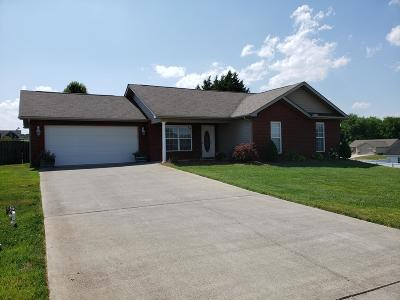 Loudon County Single Family Home For Sale: 320 Mill Creek Drive