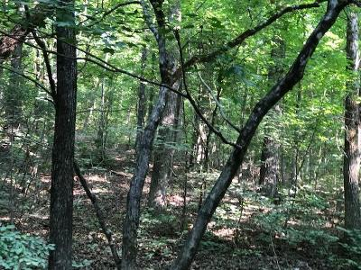Residential Lots & Land For Sale: Sand Mountain Rd