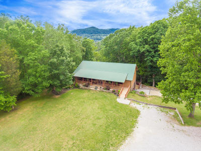 Rocky Top Single Family Home For Sale: 709 Norris Freeway
