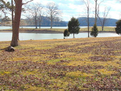 Residential Lots & Land For Sale: 629 Colonial Drive