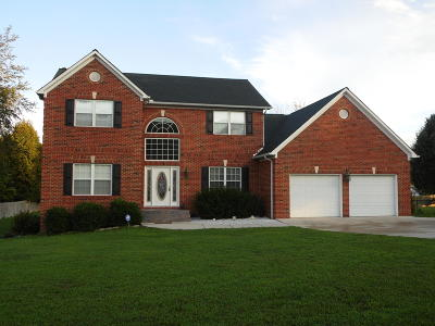 Campbell County Single Family Home For Sale: 191 Nance Lane