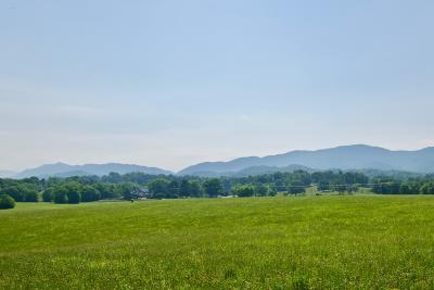 Maryville Residential Lots & Land For Sale: Lot 3 Whites Mill Rd