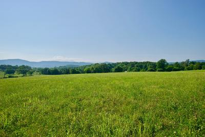 Maryville Residential Lots & Land For Sale: Lot 4 Chilhowee View Rd