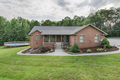 Lenoir City Single Family Home For Sale: 8895 Ford Rd