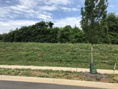 Residential Lots & Land For Sale: 509 Barnsley Rd