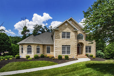 Knoxville Single Family Home For Sale: 12701 Pepperwood Lane