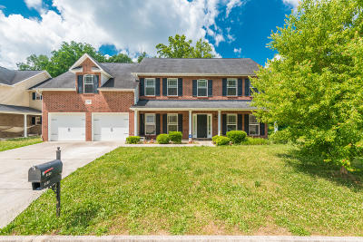 Knoxville Single Family Home For Sale: 1137 Gilbert Station Lane