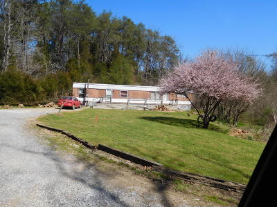 Knoxville Single Family Home For Sale: 9111 Kodak Rd