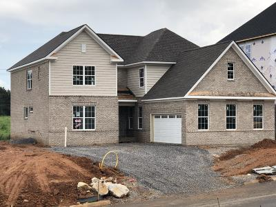 Knoxville Single Family Home For Sale: Lot 1 Boston Ivy Ln