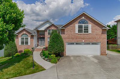 Maryville, Alcoa, Knoxville, Townsend Single Family Home For Sale: 13156 Clear Ridge Rd