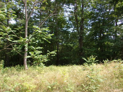 Norris Shores, Norris Shores 2, Norris Shores Ii Residential Lots & Land For Sale: Lakeview Drive