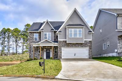 Knoxville Single Family Home For Sale: 3024 Spencer Ridge Lane