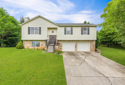 Knoxville Single Family Home For Sale: 2221 Windbrook Rd