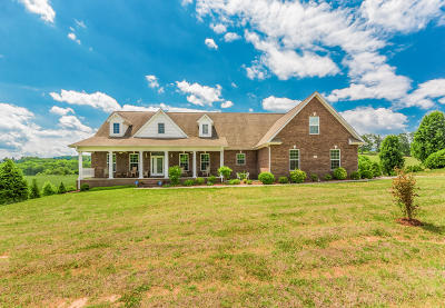 Blount County Single Family Home For Sale: 1458 Marble Hill Rd