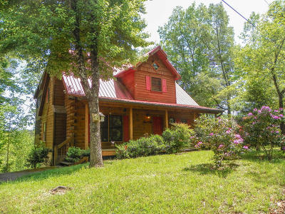 Sevier County Single Family Home For Sale: 2228 Hidden Mountain Road