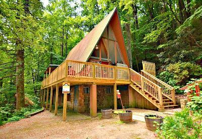 Gatlinburg Single Family Home For Sale: 913 Ski Mountain Rd