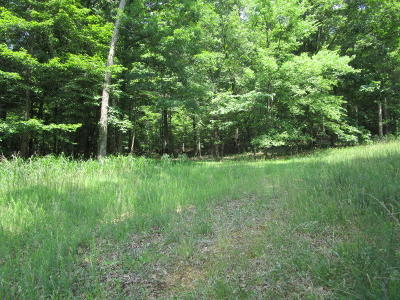 Grainger County Residential Lots & Land For Sale: 560 Cabbage Rd