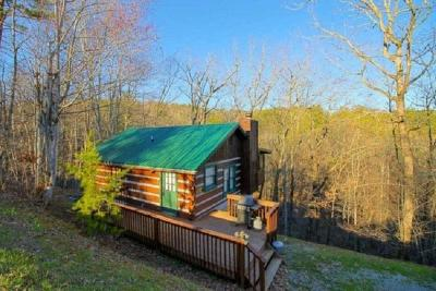 Sevierville Single Family Home For Sale: 1784 Blue Ridge Rd