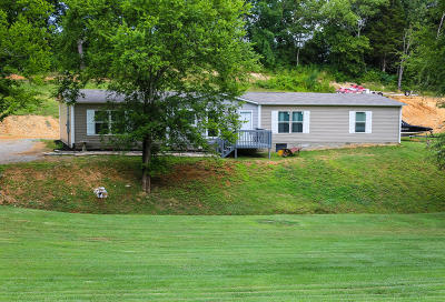 Loudon County Single Family Home For Sale: 1796 Pine Grove Providence Rd