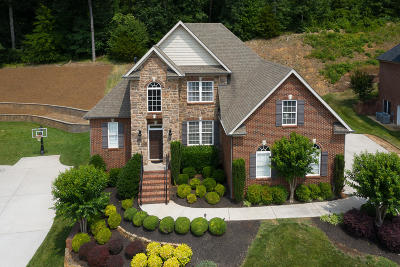 Knoxville Single Family Home For Sale: 253 Brooke Valley Blvd