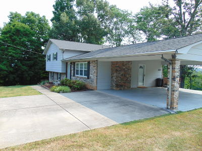 Kingston Single Family Home For Sale: 830 Patton Ferry Rd