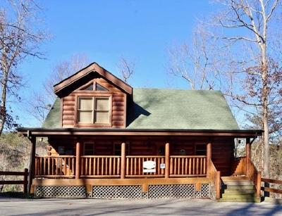 Sevierville Single Family Home For Sale: 2048 Bear Haven Way