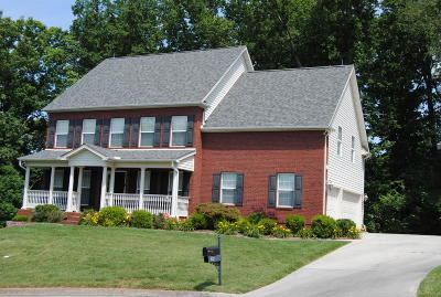 Knoxville Single Family Home For Sale: 9531 Grassy Meadow Blvd