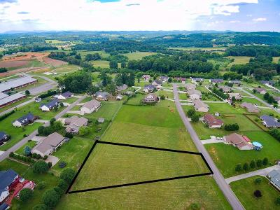 Sevierville Residential Lots & Land For Sale: Rachel St