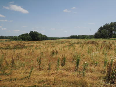 Residential Lots & Land For Sale: Meister Hills Rd
