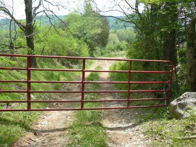 Claiborne County Residential Lots & Land For Sale: Cedar Fork Rd