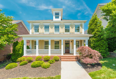 Knox County Single Family Home For Sale: 244 Ivy Gate Lane