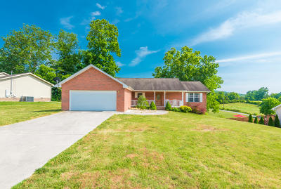 Maynardville, Andersonville, Powder Springs, Sharps Chapel, Speedwell, Washburn Single Family Home For Sale: 108 Christina Circle