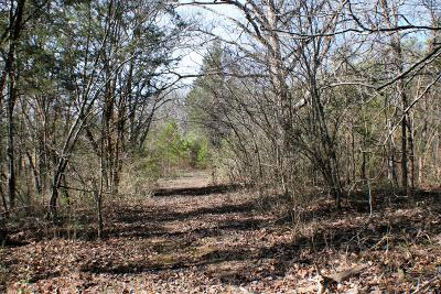 Residential Lots & Land For Sale: Sevierville Pike