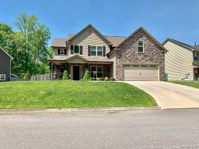 Knoxville Single Family Home For Sale: 1438 Yarnell Station Blvd