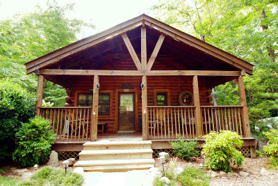 Pigeon Forge Single Family Home For Sale: 722 Nighthawk Way