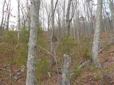 Rutledge Residential Lots & Land For Sale: Tract 1 Joppa Mountain Road